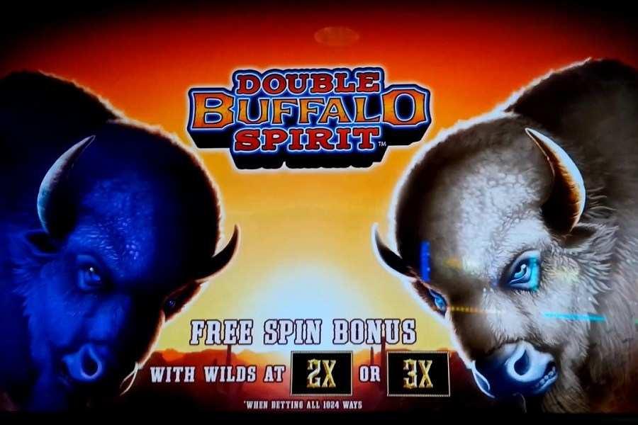 Double Buffalo Spirit