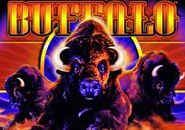 Buffalo Slots