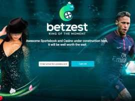Betzest Casino – The Newest Online Casinos in the Gambling Industry